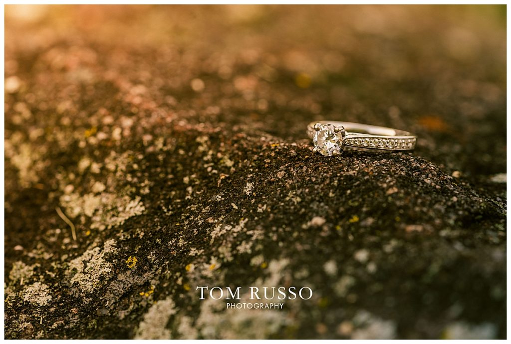 Emily and Andrew Engagement Session Allentown NJ 41